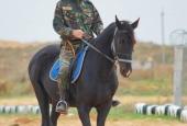 20.10.2013 Осенние военно-полевые сборы казаков 2013