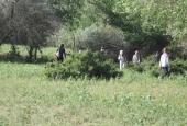 Зарница в Бузане